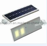 1つの統合された太陽LED力センサーの街灯のすべて