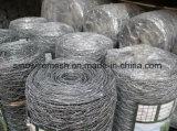 최신 판매 고품질 PVC 입히는 6각형 철사 그물세공