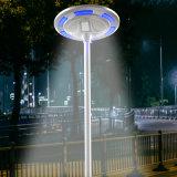 Lumière à énergie solaire de jardin de l'aluminium DEL de la CE de Shenzhen