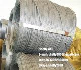 Tipo galvanizzato tuffato caldo del collegare di soggiorno del filo del filo di acciaio di alto tensionamento di GB JIS di BACCANO di AISI ASTM BS