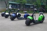 도시 기동성 Citycoco 1000W 무브러시 성숙한 전기 스쿠터 2 바퀴 전기 기관자전차