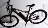 Bicicleta eléctrica de la fibra del carbón del PAS de 22 pulgadas con la opción de la válvula reguladora