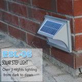 Luces solares para la luz del paso de la pared del jardín
