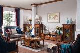 O sofá americano do couro da sala de visitas do estilo de país do projeto novo ajustou-se (AD1001)