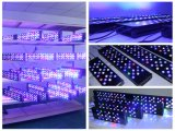 2016 180W intelligenter 3 Marinefuß LED Aquarium-Licht-