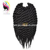 O cabelo popular de África trança a extensão do cabelo do Afro