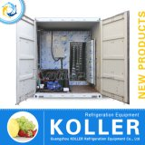Gemakkelijk Bewogen Containerized Koude Zaal voor het Opslaan van Vlees en Vissen