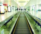Automatische Bewegende Gang voor Luchthaven