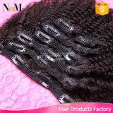 Grampo de cabelo brasileiro do Virgin nas extensões do cabelo humano (QB-CLI-CC)