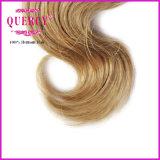 Trama por atacado do cabelo do preço de fábrica, cabelo humano brasileiro do cabelo da cor de Omber