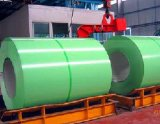 Prijs van de fabriek verfte de Gegalvaniseerde Kleur van het Staal Met een laag bedekt vooraf van de Rol (PPGI/PPGL)/