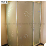 Frosted modelé Tempered Glass pour Shower Door