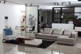 2016 Heiß-Verkaufendes modernes würdevolles Wohnzimmer-Gewebe-Sofa (HC1225)