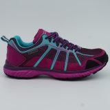 Chaussures de course des plus défuntes dames de mode augmentant des chaussures montant des chaussures