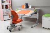 Qualität versicherte hölzernem Kind-Möbel-Set-Kind-Tisch Hya-S100b