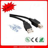 Cable imprimante d'USB 2.0 USB AM au câble de caractéristiques de nomenclature