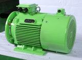 Motor de CA del motor eléctrico del imán permanente del control de velocidad de conversión de frecuencia B35 B35