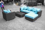 Sofá ao ar livre do Rattan da mobília com tabela