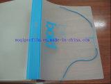 Película plástica rígida de los PP para el vacío que forma el empaquetado