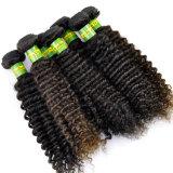 Da extensão brasileira natural humana do cabelo do Virgin de 100% Weave Kinky Lbh 129 do cabelo Curly