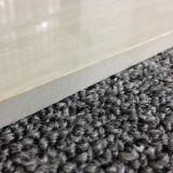 Calidad superior de la baldosa de porcelana de sal soluble 600X600m
