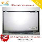 새로운 14 인치 N140bge-L43 보충 휴대용 퍼스널 컴퓨터 TFT LCD 디스플레이