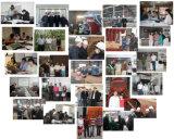 De Prijs van de Boiler van de Brandstof van de Schil van de Rijst van de biomassa 1ton