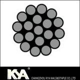 (1X19) Fune metallica dell'acciaio inossidabile per Derricking, alzare, dissipante