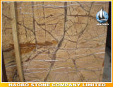 Оптовая фабрика сляба мрамора дождевого леса сразу