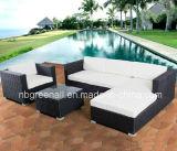Mobília ao ar livre do Rattan quente do jardim do pátio do Sell (GN-9029-1S)