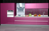 Project Useのための経済的なPVC Kitchen Cabinet