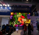 Uhd Full Color LED Display Screen com Pixel Pitch 1.923mm