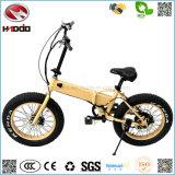 [هيغقوليتي] بالجملة [350و] يطوي كهربائيّة درّاجة إطار العجلة رخيصة مصغّرة سمين [إ-بيسكل] [فولدبل]