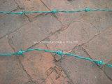 Сбывание колючей проволоки Bwg14*Bwg14 горячее с аттестацией ISO9001