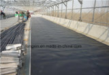 Película impermeable del HDPE de la alta calidad para la ingeniería subterránea
