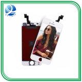 Telefone móvel LCD da melhor qualidade para a tela do iPhone 5