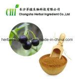 extrait de la belladone 100%Natural Hyoscyamine 0.7%-2.5% pour le supplément de nourritures