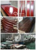 Secador ULTRAVIOLETA de la pintura que cura la máquina con la capa