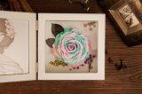 Ivenran ha conservato il blocco per grafici della foto del fiore fresco per il regalo e la decorazione