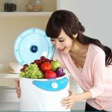 果物と野菜のためのオゾン発電機の水処理