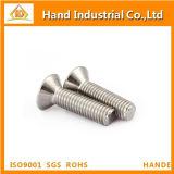 Tornillo principal de Csk del socket Hex del acero inoxidable M4 DIN7991