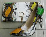 Новые ботинки высокой пятки картины змейки собрания и мешки (G-7)