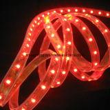 120LEDs/M 12V-24V SMD3528 6000k kühlen weißes LED-Streifen-Licht ab