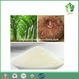 Poudre konjac normale d'extrait de l'approvisionnement 95% Glucomannan d'usine/poudre konjac fond d'Amorphophallus
