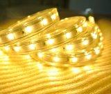 Striscia calda luminosa eccellente di bianco SMD5630 LED per la decorazione del giardino
