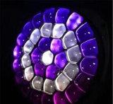 Grosses bewegliches Hauptlicht des Augen-19X15W RGBW LED mit Summen-Träger-Wäsche-Effekt