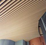Plafond de cloison de bande en métal avec la couleur d'enduit de poudre pour décoratif extérieur