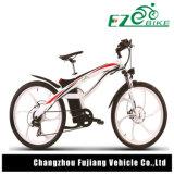 Cer-anerkanntes elektrisches Fahrrad mit wahlweise freigestelltem Farben-Rahmen
