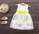 Kinder, die Form-Mädchen-Fußleisten-Organza-Kleid kleiden