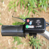 Chinese Goedkope 20 Duim die Elektrische Fiets vouwen (rseb-636)